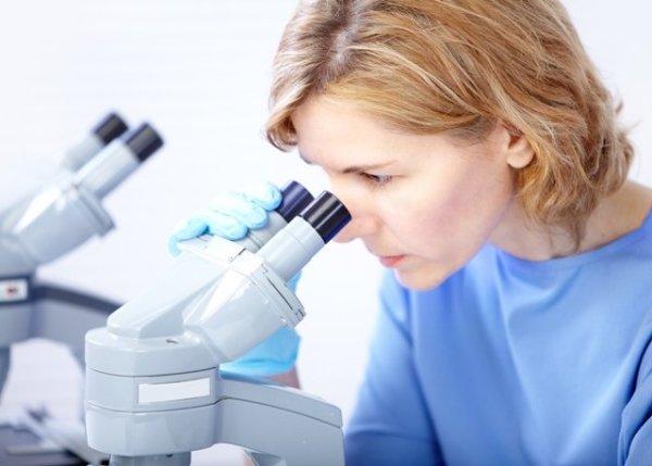 Диагностика организма - шанс выявить описторхоз на ранней стадии