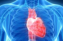 Сердечная недостаточность - причина тромбофлебита нижних конечностей