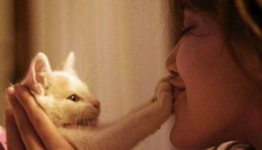 Девушка целует кошку