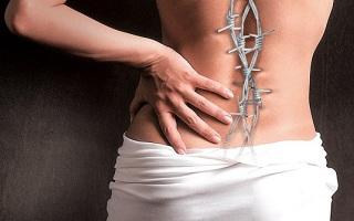 Самые вероятные причины болей в середине спины