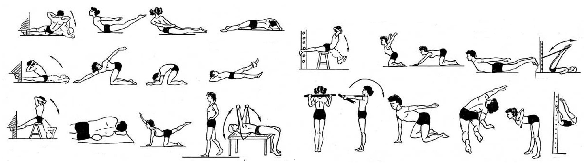 Упражнения, укрепляющие мышцы спины