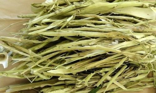 Эффективно использование народных средств на основе коры осины, которая благотворно воздействует на состояние простаты