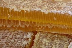 Гречишный мед от боли в горле