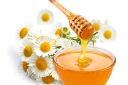Мед и ромашка для полоскания горла при аденоидах
