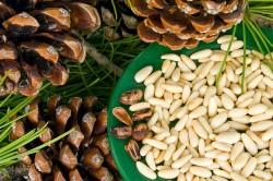 Польза орехов при болезни желудка