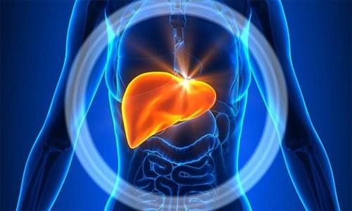 На 4 стадии развития рака простаты происходит метастатическое поражение печени