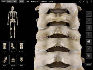 Установить причину боли помогут современные методы диагностики
