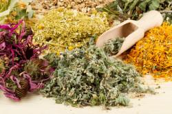 Польза травяных сборов