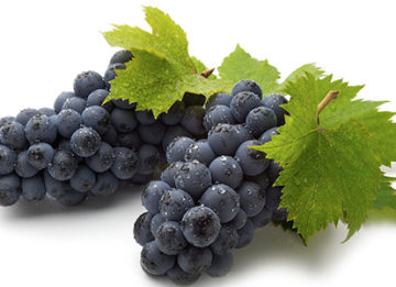 Можно ли виноград при панкреатите?