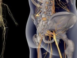 Рентгеноскопия - самый точный метод диагностики защемления